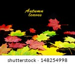 autumn leaves background in... | Shutterstock . vector #148254998
