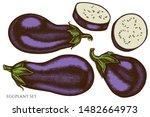 vector set of hand drawn...   Shutterstock .eps vector #1482664973