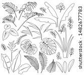 tropical plant set. black... | Shutterstock .eps vector #1482677783