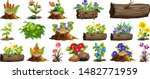 large set of colorful flowers... | Shutterstock .eps vector #1482771959