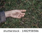 A Dead Man's Hand In The Grass. ...