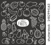 fruits doodle drawing... | Shutterstock .eps vector #1482994163