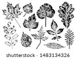 set of stamps autumn leaves ... | Shutterstock .eps vector #1483134326