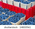 ripe blueberries in boxes | Shutterstock . vector #14833561