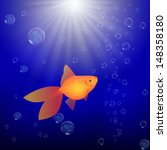 goldfish in water | Shutterstock . vector #148358180