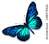 Stock photo blue butterfly isolated on white background 148373426