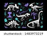 dinosaur skeleton fossils set...   Shutterstock .eps vector #1483973219