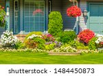 Flowers, nicely trimmed bushes and stones in front of the house, front yard. Landscape design. - stock photo
