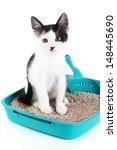 Small Kitten In Blue Plastic...
