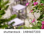 Stock photo the picture of table and chair in various type of cafeteria blurred in background 1484607203