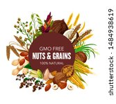 nuts  organic cereals and... | Shutterstock .eps vector #1484938619