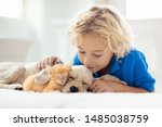 Stock photo child with baby dog and cat kids play with puppy and kitten in a basket little boy and american 1485038759