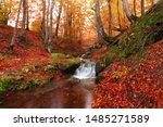 Scenic Autumn Sunrise Landscape ...