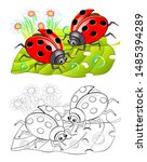two cute ladybirds sitting on a ... | Shutterstock .eps vector #1485394289
