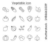 vegetable icon set in thin line ... | Shutterstock .eps vector #1486661039