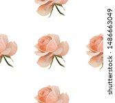 pink rose. vector illustration. ... | Shutterstock .eps vector #1486663049