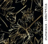 vector lotus floral botanical... | Shutterstock .eps vector #1486799216