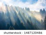Sun Light Through Fog And...