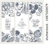 farm vegetables banner...   Shutterstock .eps vector #1487320079