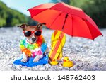 Stock photo dog under umbrella at beach with yellow rubber ducks 148762403