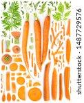 Large Group Of Orange Carrot...