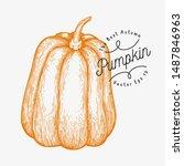 pumpkin illustration. hand... | Shutterstock .eps vector #1487846963