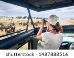 Woman Tourist On Safari In...
