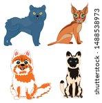 vector illustration pets cat of ... | Shutterstock .eps vector #1488538973