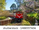 railway in alishan forest recreaction area in Taiwan