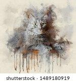 Watercolor Portrait...