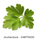 parsley herb isolated on white... | Shutterstock . vector #148970420