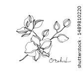 vector orchid floral botanical... | Shutterstock .eps vector #1489810220