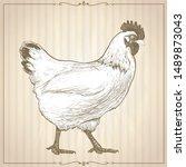 hand drawn graphic illustration ...   Shutterstock . vector #1489873043