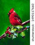 Red Cardinal Bird On A Green...