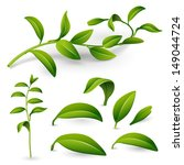 branch of a plant with green... | Shutterstock .eps vector #149044724