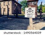 Auschwitz  Poland   August 11 ...