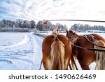 Sleigh Ride In The Snow In...