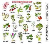 antioxidant foods and herbs.... | Shutterstock .eps vector #1490924603