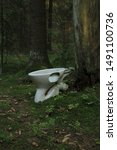 Old White Toilet In The Forest