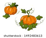 Pumpkins With Leaves On A White ...