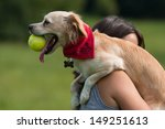 Stock photo small funny dog with ball 149251613
