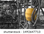 Small photo of Yellow floater from fishing boat with ropes Yellow floater from fishing boat with ropes Yellow floater from fishing boat with ropes