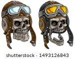 cartoon detailed realistic... | Shutterstock .eps vector #1493126843