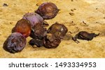 Rotting Windfall Plums  On A...