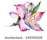 Watercolor Flower Alstroemeria