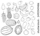 vector set of hand drawn sketch ... | Shutterstock .eps vector #1493549486