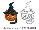 Cat Pumpkin In Witch Hat  ....