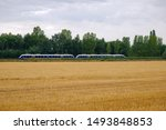 Outdoor Scenery Of Wheat Or...