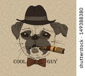 Portrait Of Pug Dog With Cigar...