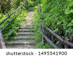 Wooden Steps Up To Hill And...